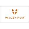 Ремонт телефонов Wileyfox